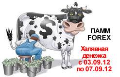 PAMM-счет. 03.09 — 07.09.2012. Первый серьезный доход.