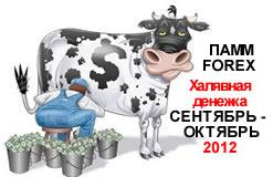 ПАММ-счет. Инвестиции. сентябрь-октябрь 2012