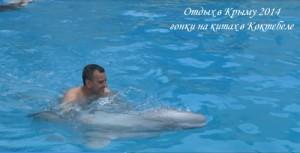 Отдых в Крыму 2014. Гонки на китах в Коктебеле