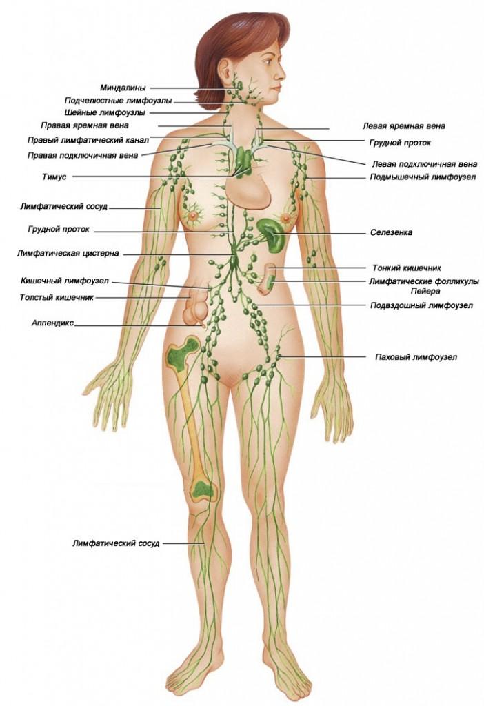 Болит мечевидный отросток грудины лечение