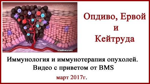 Иммунология и иммунотерапия опухолей. Видео с приветом от BMS