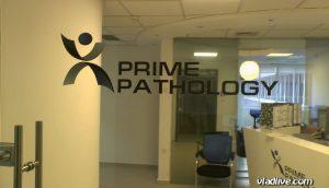 Гистология в Израиле. Лаборатория