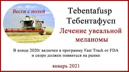 Tebentafusp - Тебентафусп