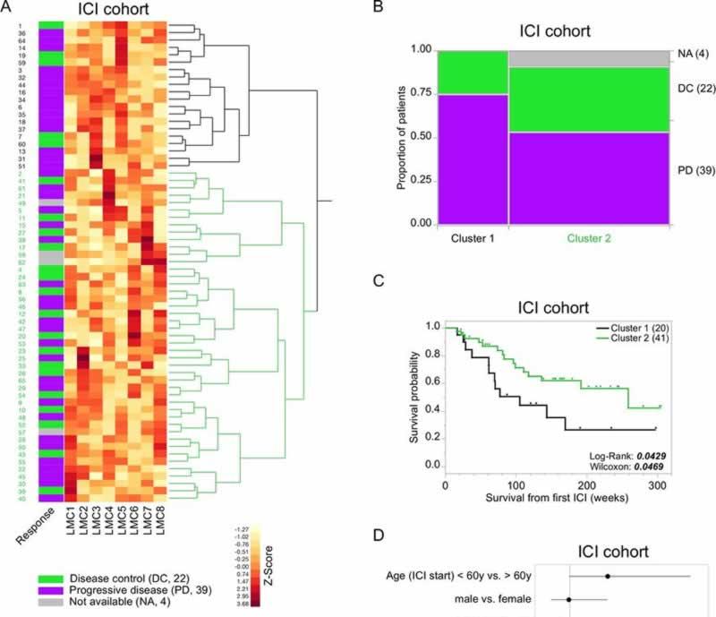Метилирование ДНК - прогнозирование эффективности иммунотерапии при меланоме